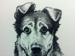 """Музыка к документальному фильму """"Каждая собака"""""""