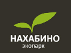 Быстрый ТОП Яндекса за 15 000 рублей