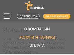 Элементы сайта интернет-провайдера Томика