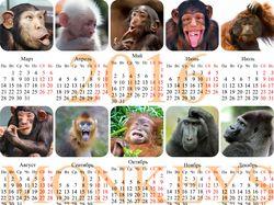 Календарь с участием коллег
