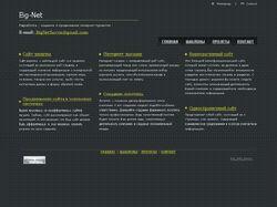 Разработка , создание и продвижение интернет-проек