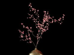 Plum_Blossom_Decor_Set