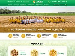 """Дизайна сайта для аграрного предприятия """"Пчёлка"""""""