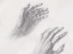 Руки с натуры. Карандаш.