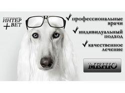 """Ветеринарная клиника """"ИнтерВет"""""""