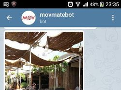 Чат-бот @movmate для Telegram