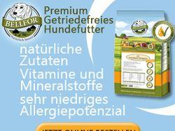 Gif баннер для немецкого интернет магазина