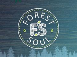 GreenForest: Эко-мебель на заказ