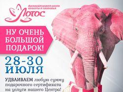 Плакат Лотос