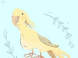 Иллюстрация, птица