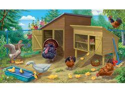 Ферма. Птичий двор
