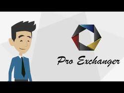 Анимационное видео для компании Profesional Exchan