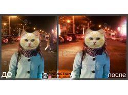 Обработка фотографий, фотошоп, ретушь.