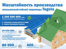 Инфографика_Tegola