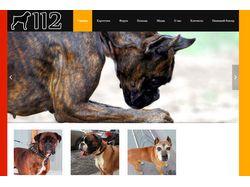 Сайт благотворительного фонда помощи собакам