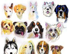Этюды различных пород собак