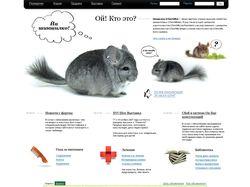 Дизайн главной страницы для сайта Chinline.ru