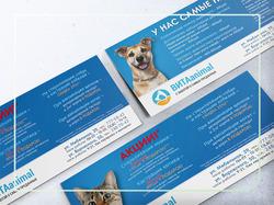 Дизайн еврофлаера ветеринарной клиники