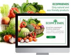 EcofriendsZ