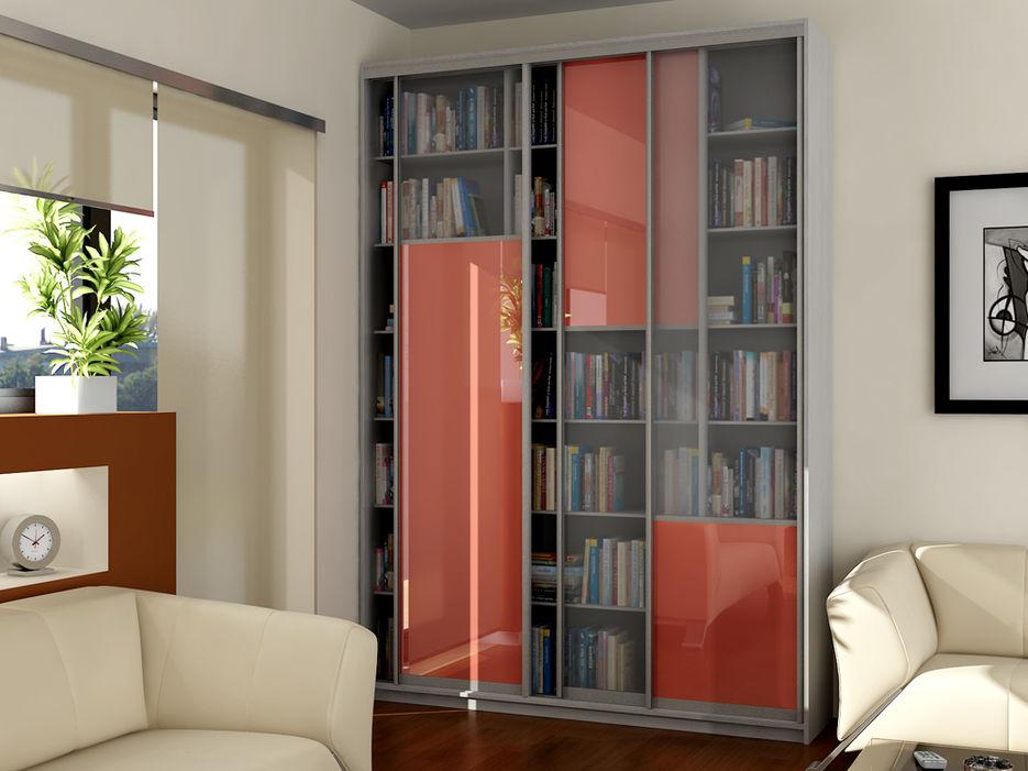 Шкаф-купе книжный либерти 2 для библиотеки.