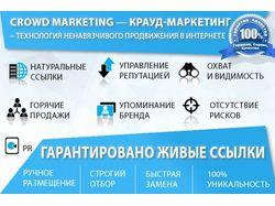 Крауд маркетинг – ручное размещение 50 ссылок.