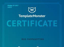 Сертификат веб-разработчика Елизарова Романа