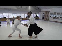 Aikido Master Class in Kiev / Guillermo Gomez 2017
