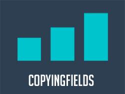 Виджет для AmoCRM - CopyingFields