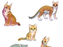 Дикие кошачьи