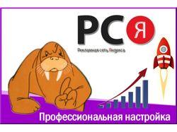 Специалист по рекламе в РСЯ.