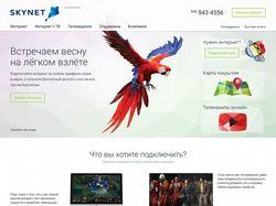 """Сервисный сайт для интернет-провайдера """"Sky-net"""""""