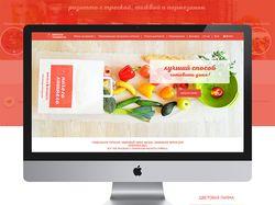 """Веб дизайн сайта """"ничего лишнего"""""""