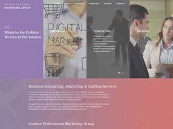 Компания Professional Marketing Group