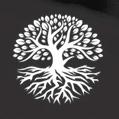 Дерево Белое