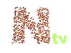 Заставка Nature TV