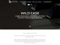 Wild-case - мы делаем музыку
