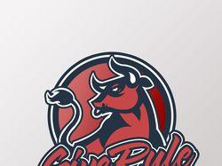 Логотип для Киберспортивной команды GiveRule