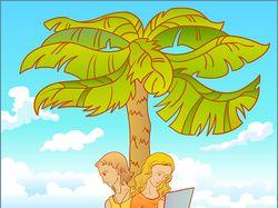 Пара студентов готовится к экзаменам под пальмой