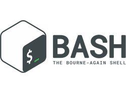 Написание bash-скриптов