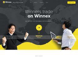 Адаптивная верстка Winnex