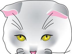 Отрисовка британской породы кошек. Мордочка.