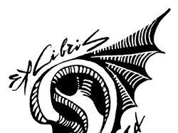 Логотипы/ знаки