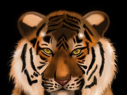 Иллюстрация Тигр