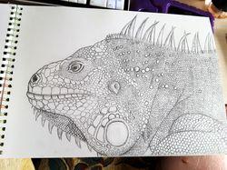 Игуана (графитовый карандаш)