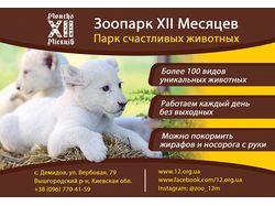 Рекламный макет для зоопарка XII Месяцев