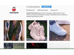 Продвижение интернет-магазина кроссовок(инстаграм)