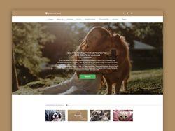 "Website ""Nostrum Pets"""
