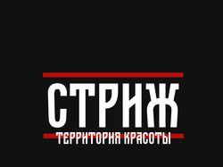 "Логотип для салона красоты ""Стриж"""