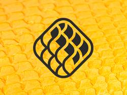 "Логотип ""Bavosa"""