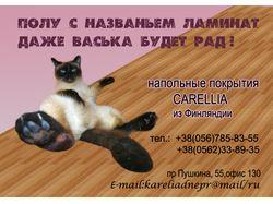 """Макет билборда для фирмы """"Carellia"""""""